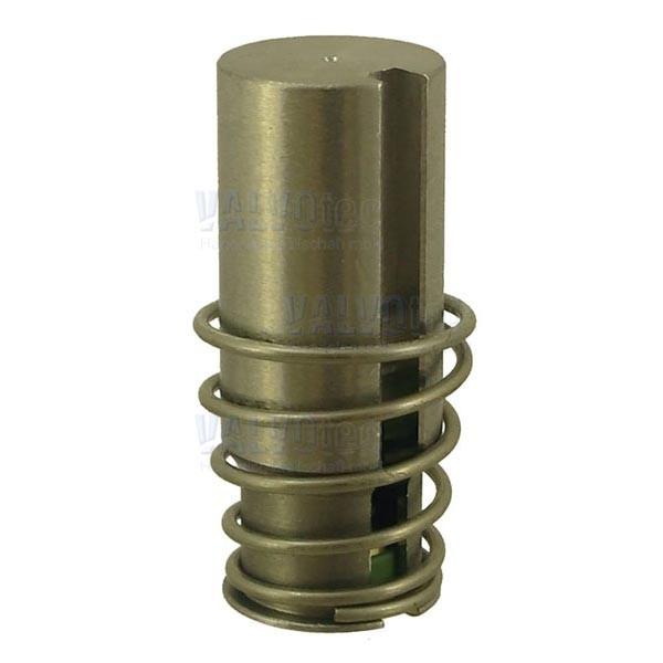 ACL Kern für 2-Wege-Magnetventil Viton®